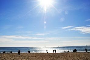 haeundae-beach-229490_1920
